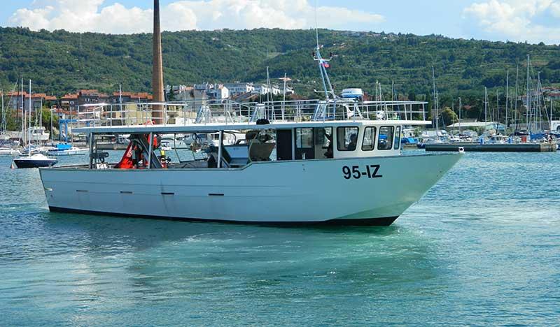 barche da lavoro mitili