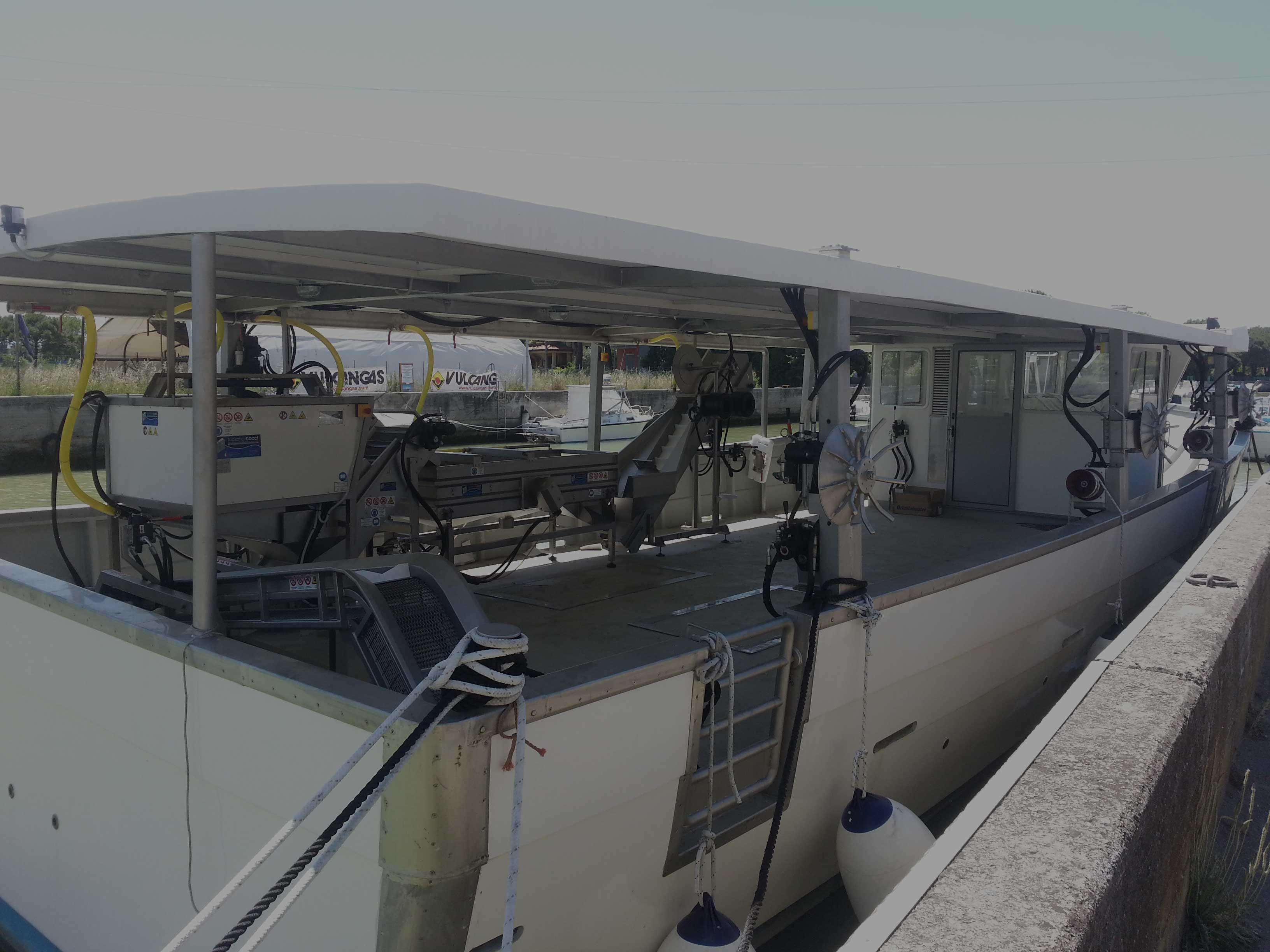 barca raccolta mitili